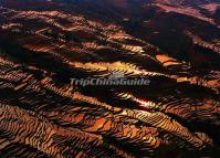 The Rice Terraces at Yuanyang Bada Scenic Area