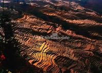 Bada Rice Terraces-World Cultural Heritage