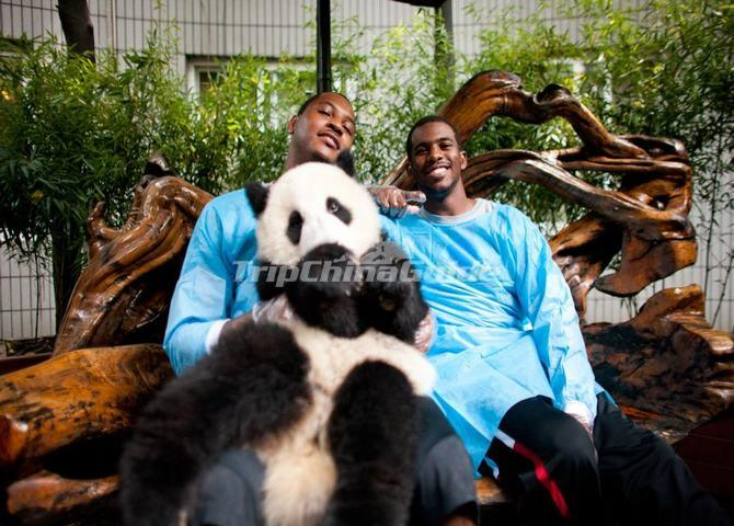 NBA Players and Pandas in Chengdu