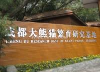 Chengdu Research Base of Giant Panda Breeding Sichuan China