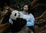 Chengdu Research Base of Giant Panda Breeding China