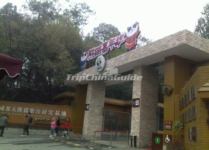 "<a target=""_blank"" href=""http://www.tripchinaguide.com/photo-p11-6436-chengdu-research-base-of-giant-panda-breeding.html"">Chengdu Research Base of Giant Panda Breeding</a>"