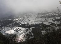 Duoyishu Rice Terraces Yunnan China