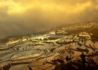 Duoyishu Rice Terraces Dusk Scenery