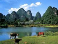 Guilin Tourism Golden Season is Coming, the Old and New Attractions Show Each Charm