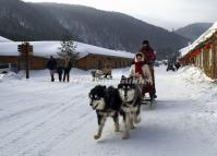 Dog Sled in China's Snow Town