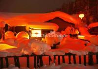 Harbin China's Snow Town Attractive Night View