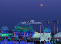 3-day Harbin Ice Festival Tour