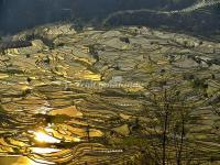 Yunnan Honghe Hani Rice Terraces