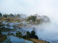 Honghe Hani Rice Terraces in Fog