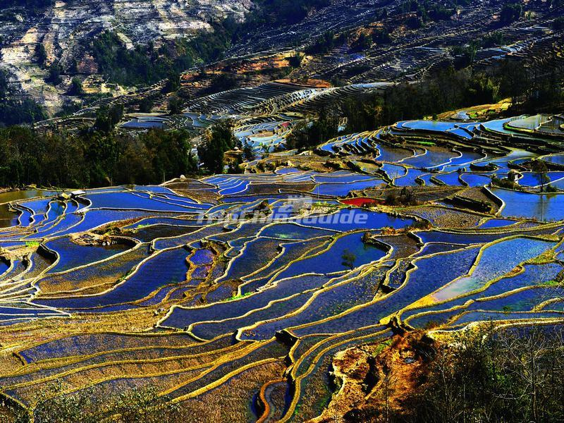 honghe hani rice terraces Photo taken on may 13, 2015 shows the hani rice terraces at sunrise in yuanyang county, honghe prefecture, southwest china's yunnan province hani terraces, particularly created by chinese hani ethnic group, is an absolute wonder of farming civilization with a long history of more than 1,300 years.