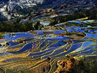 The Blue Honghe Hani Rice Terraces