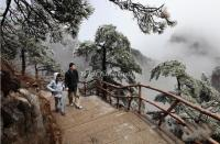 Rime in Huangshan Mountain