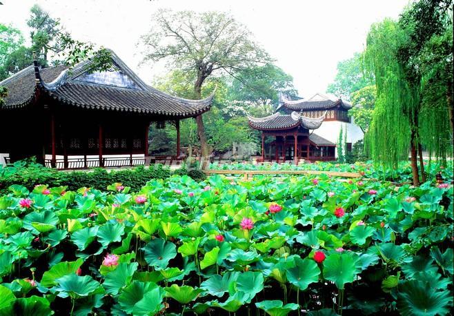 Sozhou, grad sa najlepšim baštama na svetu - Page 2 Img_469_d20120405153616