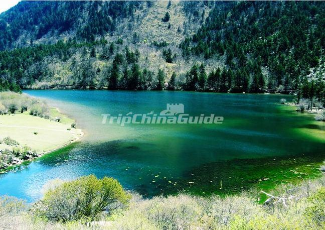 Summer Pictures of Jiuzhaigou