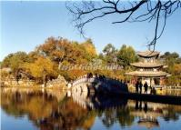 Lijiang Black Dragon Pool Park Autumn