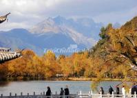 Lijiang Black Dragon Pool Park Autumn Scenery