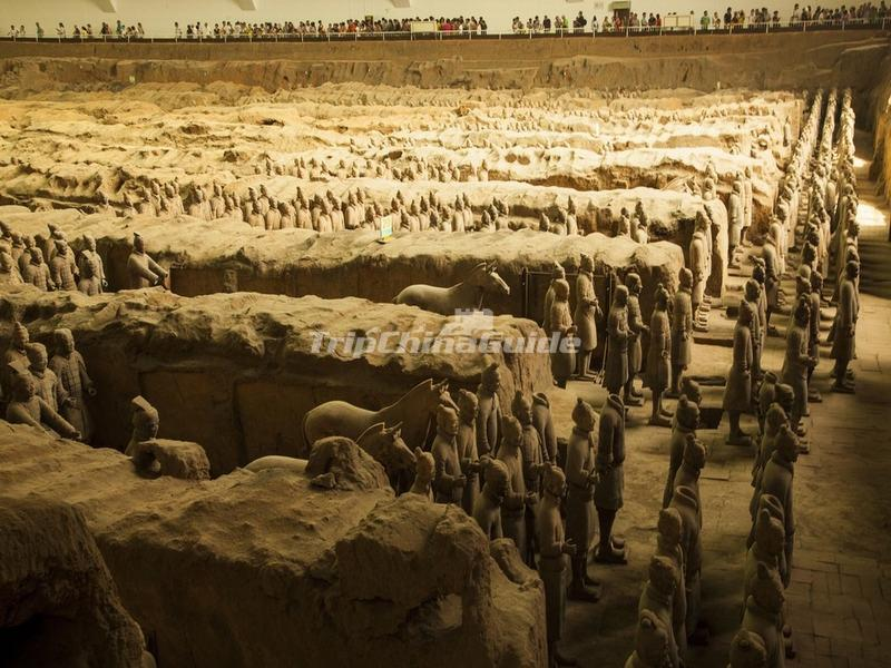 "<a target=""_blank"" href=""http://www.tripchinaguide.com/photo-p892-14102-museum-of-the-terracotta-army.html"">The Terracotta Warriors and Horses</a>"