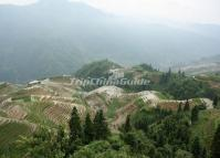Marvelous Longji Rice Terrace Longsheng