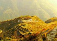 Ping'an Village Autumn Longsheng