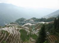 Ping'an Village and Longji Rice Terrace
