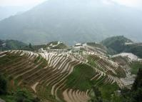 Longji Rice Terrace Guangxi China