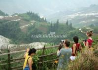 Longsheng Rice Terraces Photo Tour