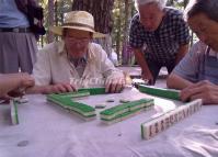 Foreigners Play Chengdu-style Mahjong - Chengdu Mahjong Photos