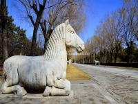 Horse Statue in Beijing Mng Tombs Sacred Way