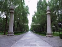 The Ornamental Columns (Huabiao) in Sacred Way Beijing