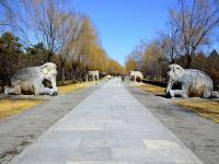 Elephant Statue in Beijing Ming Tombs Sacred Way