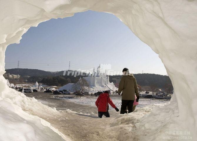 Shenyang International Ice And Snow Festival Shenyang International Ice And