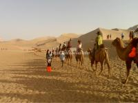 Camel Riding on a Silk Road Tour