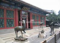 Summer Palace Lifelike Animals Sculpture Beijing
