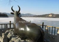 Summer Palace Beijing Bronze Ox