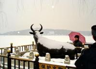 Summer Palace in Snow