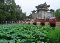 Summer Palace Beautiful Lotus Pond Scenery