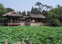 Summer Palace Lotus Pond Beijing