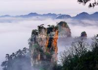 Tianzi Mountains Wallpaper