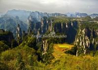 Tianzi Mountain Scenic Area