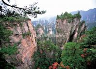 Tianzi Mountains in China