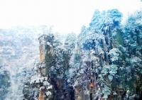 Tianzi Mountain Nature Reserve in Winter