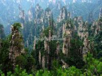 The Sand Stone Peak in Tianzi Mountain