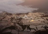 Tiger Mouth Rice Terraces Yuanyang County