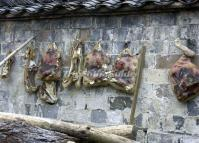Cured Meat on the Wall at Xidi Village