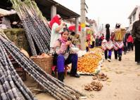 The Sugar Cane Stall
