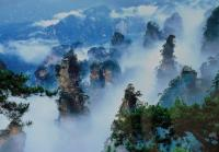 Zhangjiajie National Forest Park Sea of Clouds
